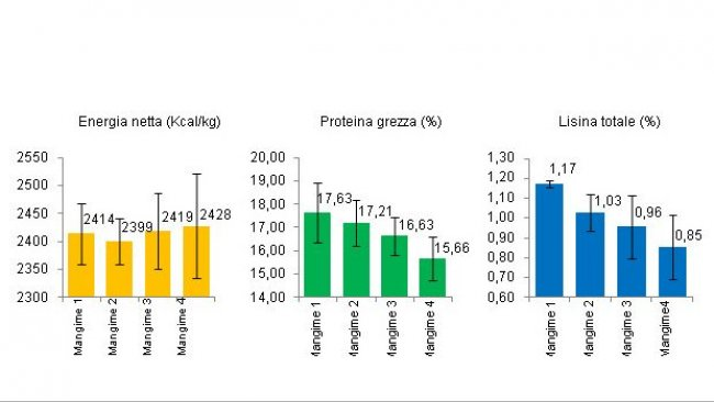 Energia netta, proteina grezza e lisina totale in 4 mangimi