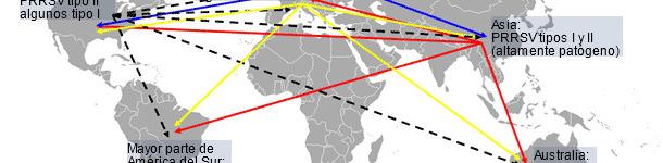 Distribución mundial del PRRSV y transmisión intercontinental hipotética