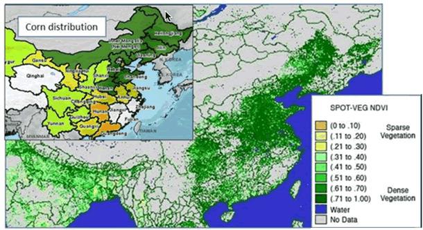 corn-distribution.gif