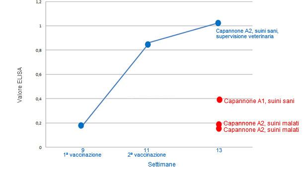 Representación de la media de resultados de ELISA por grupos
