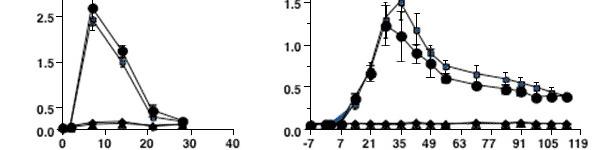 Dinamica della risposta anticorpale fronte ad una infezione da PRRSV tipo 2