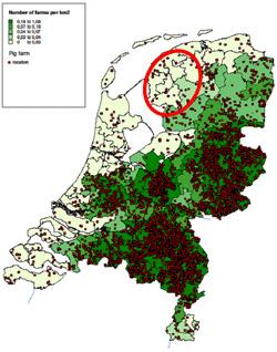Distribución de las granjas porcinas en Holanda