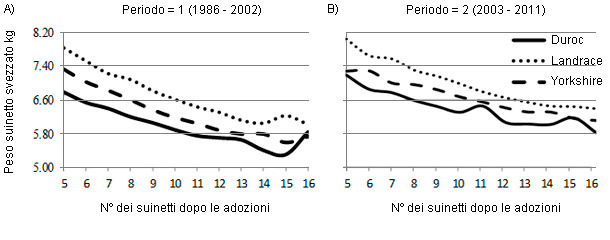 Effect of number after transfer or parity on piglet weaning weight in purebred litters by breed of sow