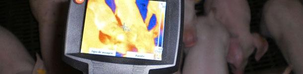 Diagnosi termografica: utilità pratiche per l'allevamento