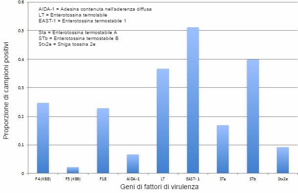 Prevalenza dei fattori di virulenza di E. coli