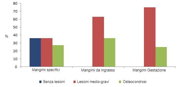 Il consumo di mangimi specificiper scrofette riduce la prevalenza delle zoppie
