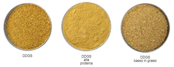Figura 2. Adattato da www.alibaba.com