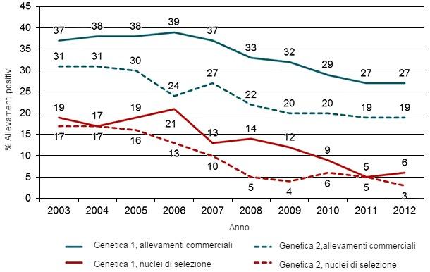 Evoluzione del numeri di allevamenti positivi al PRRSv in Danimarca, allevamenti commerciali e di selezione