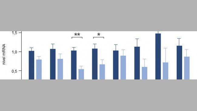 Effetto dell'aggiunta di timo, vaniglia ed acidi organici sull'espressione genomica di diverse citochine intestinali di suinetti