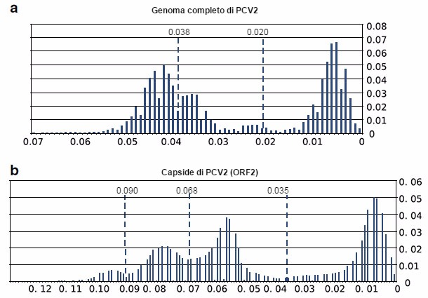 pleto del PCV2 e delle sequenze del ORF2