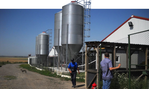 Figura 1. Tipico capannone nuovo dell'Est Europa, circondati dai campi