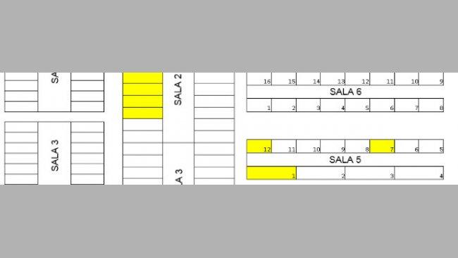 Disegno dell'allevamento. I box contenenti i suinetti orecchinati sono in giallo