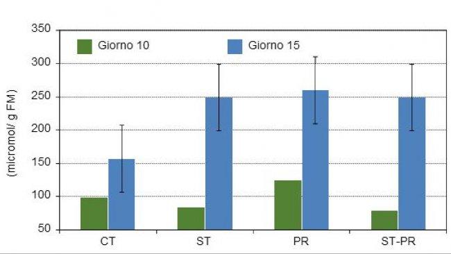 Concentrazione di acidi grassi a catena corta sul contenuto del colon di suinetti di 10 e di 15 gg dopo lo svezzamento con 4 diete sperimentali diverse.