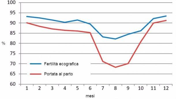 Grafico 2. Risultati mensili nel 2015 di fertilità ecografica e portata al parto.