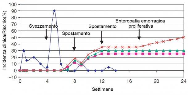 Epidemiologia delle malattie batteriche gastro-intestinali