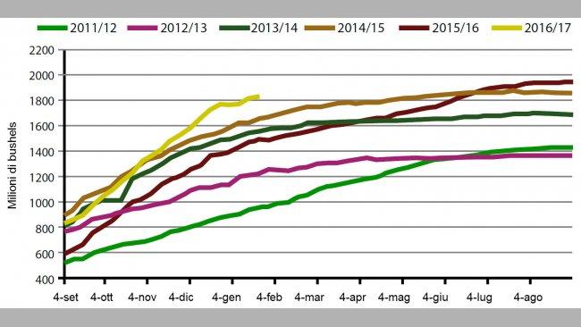 Grafico 1. Volumi settimanali delle esportazioni di semi di soia USA, campagna attuale e le cinque precedenti. Fonte: USDA.