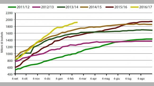 Grafico3. Volume settimanale di export di soia USA nella campagna attuale e nelle 5 precedenti (milioni di bushels). Fonte: USDA