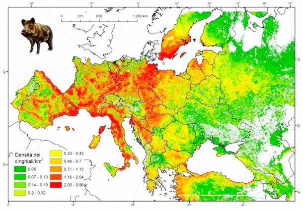 Figura 2: Popolazione stimata di cinghiali in Europa. Fonte: FAO-ASFORCE, Maggio 2015
