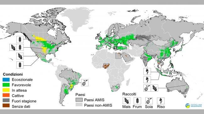 Figura 2. Condizioni dei raccolti nei paesi AMIS (al 28 di marzo). Fonte GEOGLAM