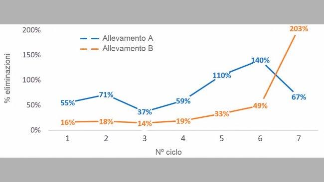 Grafico 1. % di scrofe eliminate per nº diciclo (nº scrofe eliminate per ciclo/numero medio di scrofe per ciclo) nel 2016