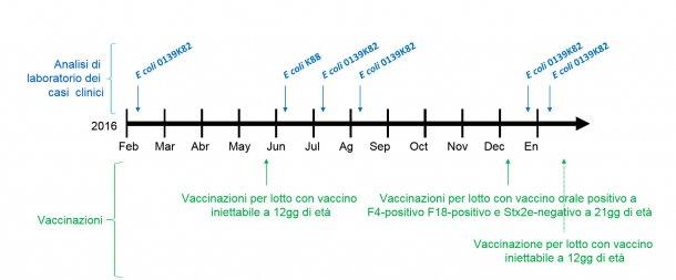 Immagine 1: Analisi di laboratorio dei casi clinici e calendario delle vaccinazioni