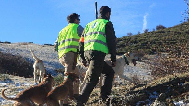 Foto 5: La caccia è necessaria ma i cani da caccia non devono entrare in allevamento