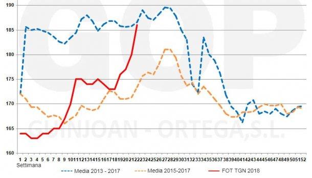 Grafico 3. Stagionalità dei prezzi del mais FOT, €/t (origine stoccaggio al porto di Tarragona). Fonte: Lonja de cereales Barcelona