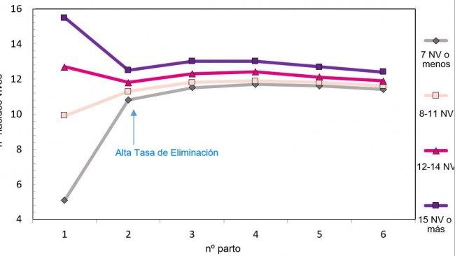 Grafico 1. Produzione lungo la vita della scrofa in funzione dei suinetti nati