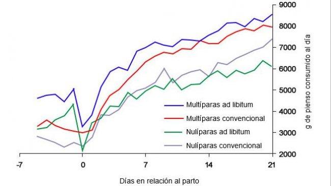 Grafico6. Consumo di mangime in lattazione di scrofe alimentate ad libitum e/ o con un programma convenzionale nel periparto