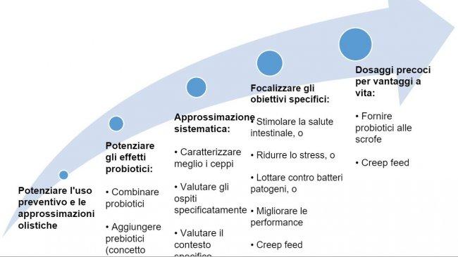 Figura 2. Strategie per migliorare l'uso dei probiotici in fasi precoci