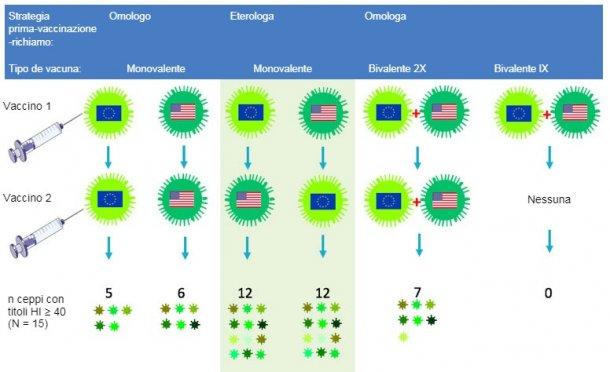 """Figura 2. Effetto dei protocolli vaccinali tradizionali e della """"vaccinazione di richiamo eterologa"""" sull'ampiezzadella risposta anticorpale per H3N2. Le bandiere indicano i ceppi europei ed americani del SIVH3N2. Il siero raccolto al giorno 14 dopo il richiamo fu analizzato nei confronti di 15 virus antigenicamente diversi, inclusiquelli vaccinali. I numeri rappresentano il numero di virus nei confronti dei quali i titoli di anticorpi HI furono ≥ 40."""
