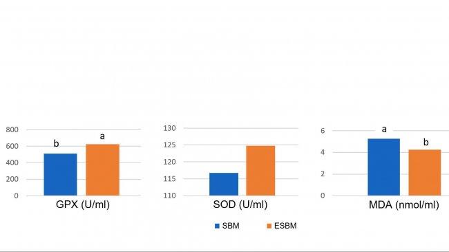 Grafico 1: L'alimentazione con soia trattata enzimaticamente con un basso contenuto di antigene di soia ha portato a concentrazioni plasmatiche più elevate di enzimi antiossidanti e una riduzione della malonil dialdeide (MDA), un marker di danno ossidativo, il giorno 14 dopo lo svezzamento, rispetto ad una farina di soia con un alto livello di antigene. (Ma et al., 2018)