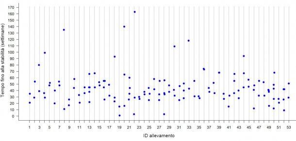 Figura 2: Tempo di stabilità contro la PRRS in ogni allevamentoin 53 scrofaienel Midwest degli Stati Uniti. Ogni punto rappresenta il TTS osservato per ogni focolaio in undeterminato allevamento.