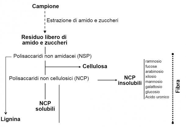 Figura 1. Determinazione di polisaccaridi non amilacei, lignina e fibra mediante un procedimento enzimatico-chimico. Knudsen (2014)