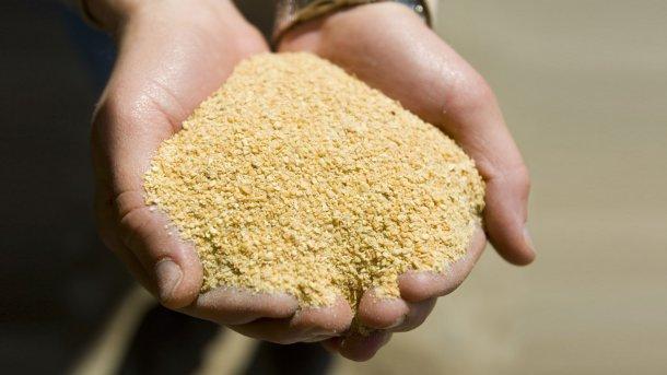 Farina di soia. United Soybean Board