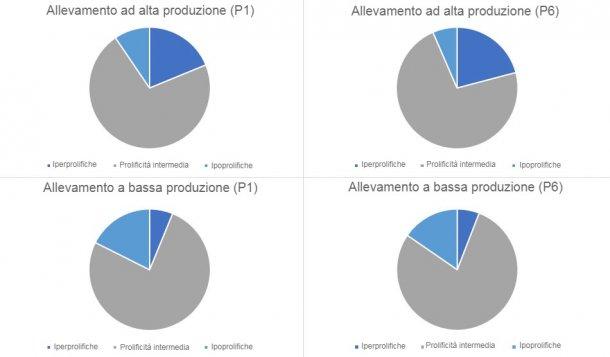 Grafico 1. Distribuzione del tipo di scrofe, in parto 1 e 6, categorizzate per i tipi di allevamenti rilevati