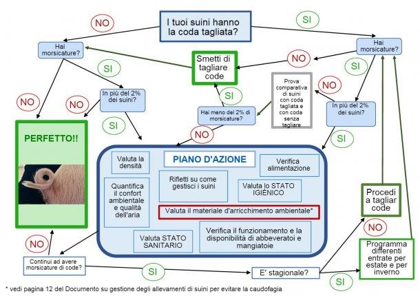 Albero della presa di decisioni sul taglio delle code elaborato da ANPROGAPOR
