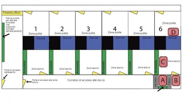 Schema della zona doccia e dei suoi accessi. La Doccia 6 è stata utilizzata per eseguire lo studio. Sono indicati l'ubicazione della panca per i giorni di trattamento ed il posizionamento della polvere fluorescente (Glo Germ). La posizione di ciascun punto di campionamento è designata con le lettere A, B, C e D.