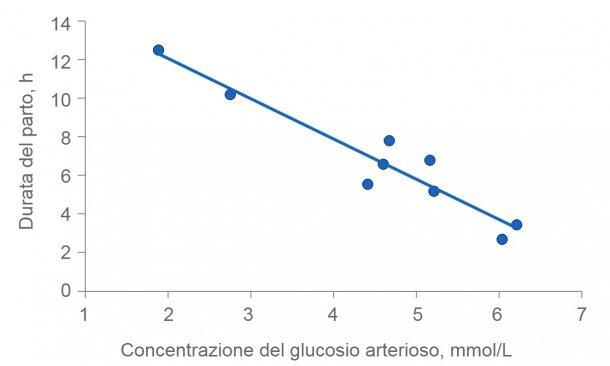 Figura 2: La durata del partosi prolunga se le scrofe si esauriscono. Normalmente, il glucosio plasmatico rimane costante a 4,5 (intervallo da 4 a 5) mmol / L, ma poco dopo l'alimentazione supera questo livello e diverse ore dopo l'alimentazione, la glicemia può essere compromessa se il deposito di glicogeno nel fegato è esaurito.