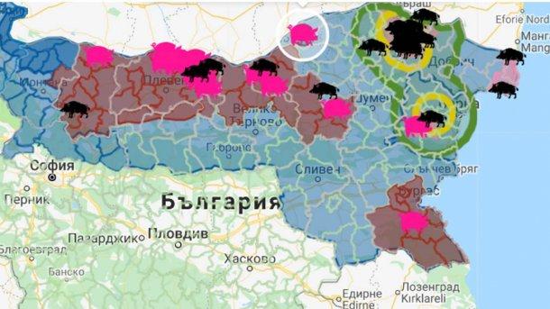 El foco, con 17.000 animales susceptibles, se encuentra cerca de la frontera con Rumanía.