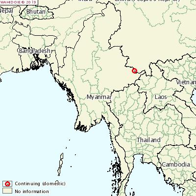 ASF reaches Myanmar