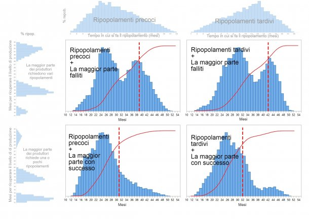 Grafico1. Sono descritti quattro diversi modelli di ripopolamento del patrimonio suinicoloin base al momento in cui vengono prese le decisioni di ripopolamento (precoce/ tardivo: parte superiore del grafico) e al tempo necessario per ripristinare completamente la produzione (uno-pochi / varitentativi: a sinistra del grafico). Le distribuzioni di probabilità cumulative del tempo di recupero sono visualizzate in rosso e le linee rosse tratteggiate mostrano il numero di mesi necessari fino al raggiungimento dell'80% del ripopolamento.