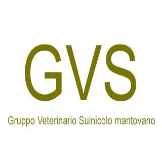Gruppo veterinario suinicolo mantovano